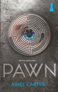 495d9-pawn